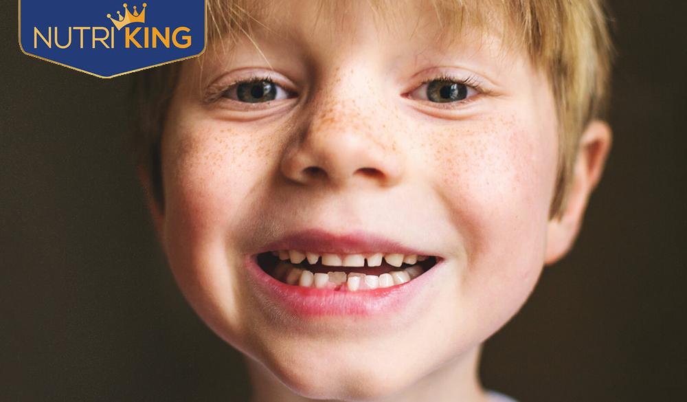 Chăm sóc trẻ biếng ăn trong giai đoạn mọc răng thế nào?